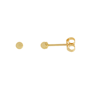 <p>2.5mm Ball Stud Earrings</p>