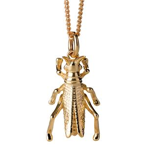 <p>Grasshopper necklace</p>