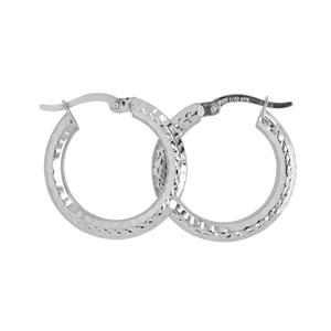 9 Carat White Gold Earrings with Sterling silver