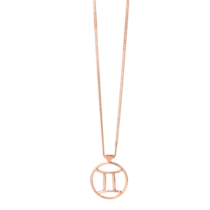 <p>Gemini necklace available in rose gold, yellow gold and sterling silver</p>