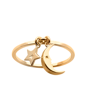 <p>Moon and Star Charm Ring</p>