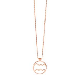 <p>Aquarius necklace</p>