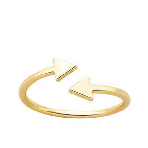 <p>Celesital arrows ring</p>