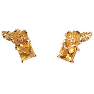 <p>&nbsp;Rock Garden Earrings - Citrine</p>