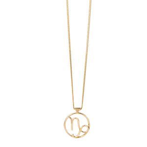 <p>Capricorn necklace available in yellow gold, rose gold and sterling silver</p>