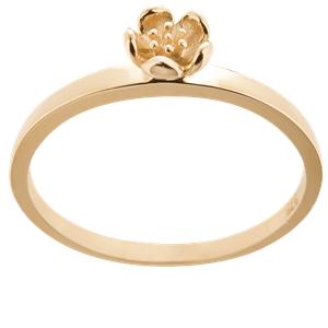 <p>&nbsp;Botanical mini ring</p>