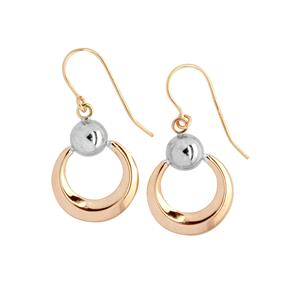 9 Carat Rose and White Gold Earrings