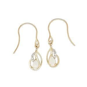 <p>9ct Yellow Gold Earrings</p>