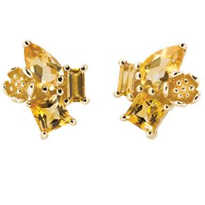 <p>Rock Garden Earrings - Citrine &nbsp;</p>