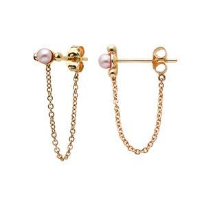 <p>Vermeer Pearl Earrings</p>