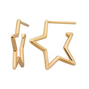 <p>Star outline earrings</p>