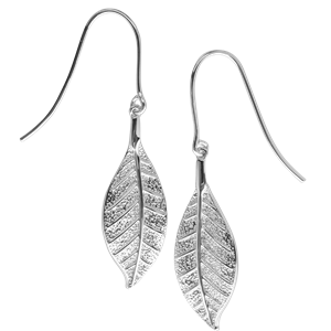 <p>Pohutukawa leaf earrings and box</p>