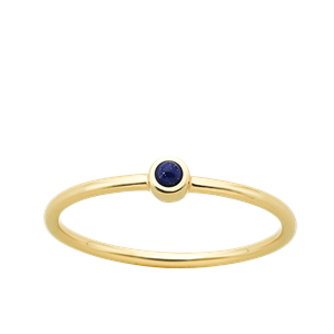 <p>Fine orbit ring</p>