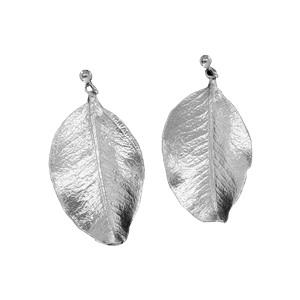 <p>Springfire leaf studs and box</p>